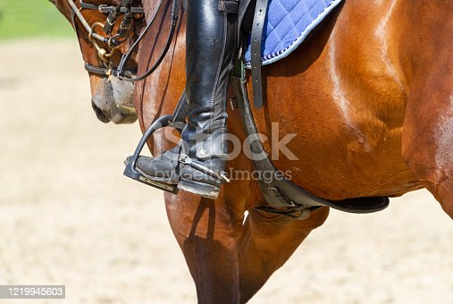 Horseman rides on riding dressage competitions