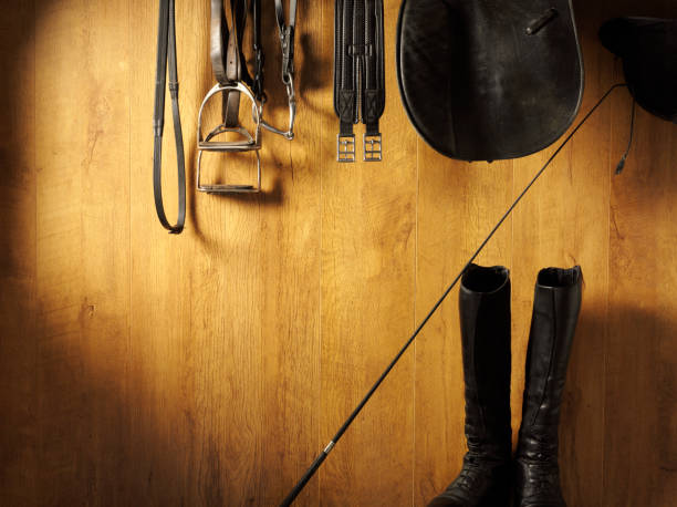 riding equipment hanging - horse bit stock photos and pictures