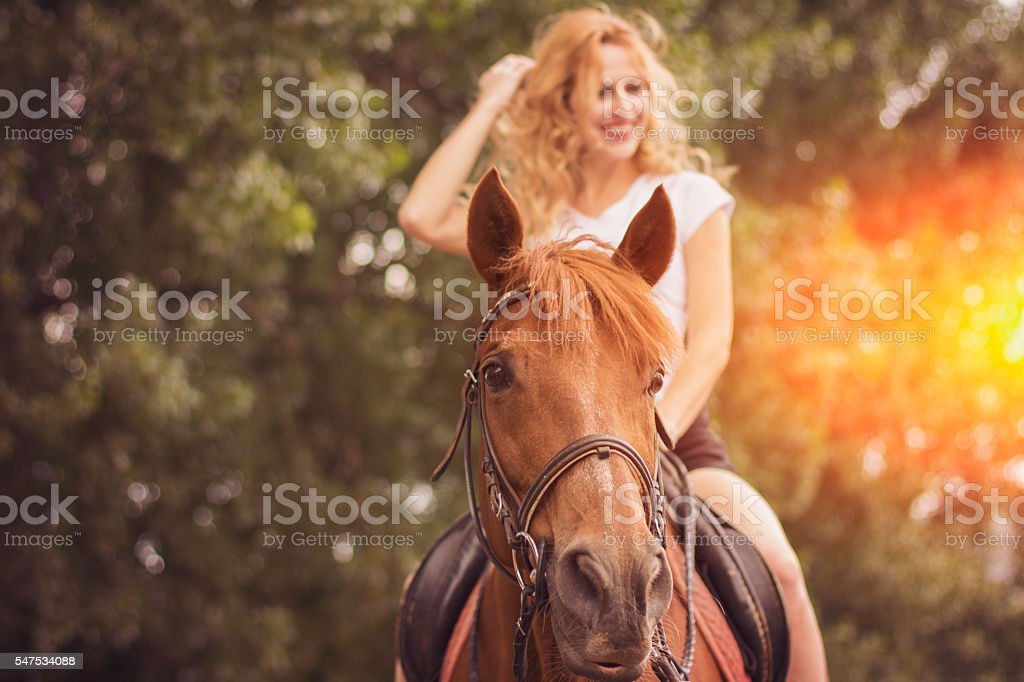 Riding horse stock photo