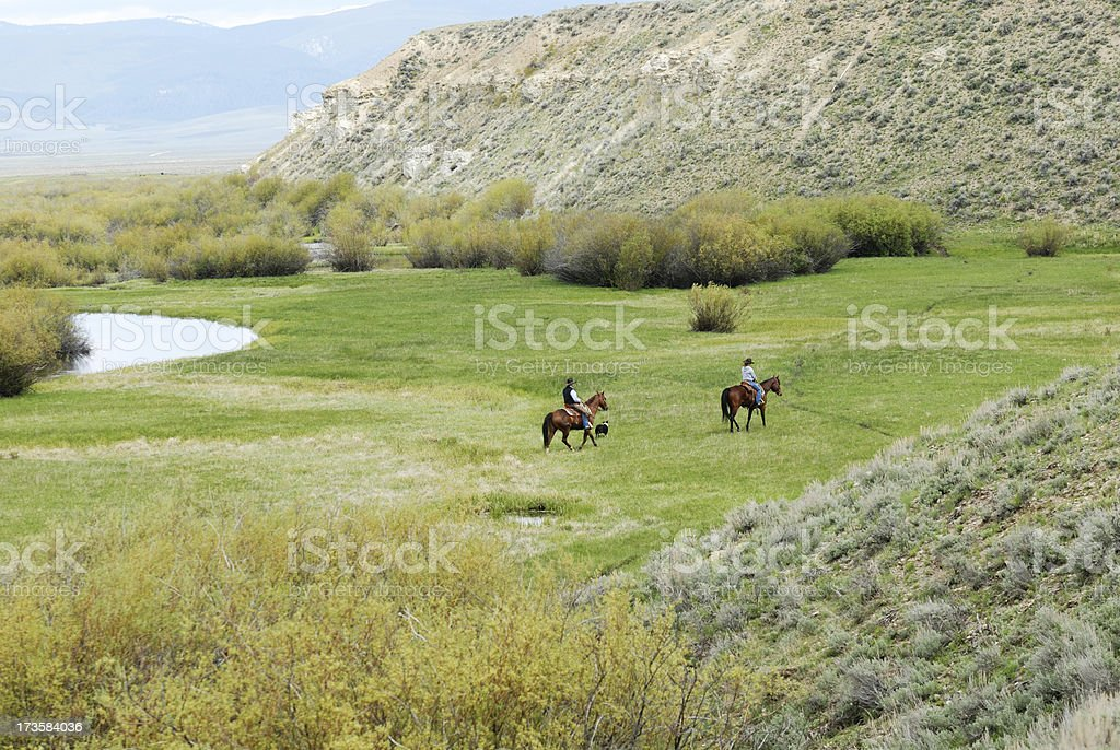 Riding Horses by the River stock photo