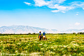 Couple riding horses in green pasture.