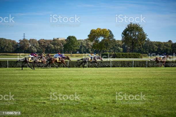 Riding horses on horse races against background of sunny sky picture id1145667913?b=1&k=6&m=1145667913&s=612x612&h=k4xucab0mtyx8rb9zwxrwt3jgv5xxlrqwd5bf s2m3q=