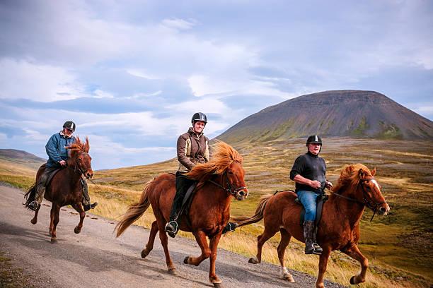 Riding icelandic ponies picture id516914603?b=1&k=6&m=516914603&s=612x612&w=0&h=5tcl65 vpsvskjcjn4diflgl6onikz1y521lyhohxqi=