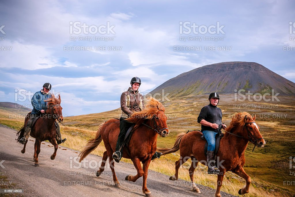 Riding Isländische Ponys – Foto