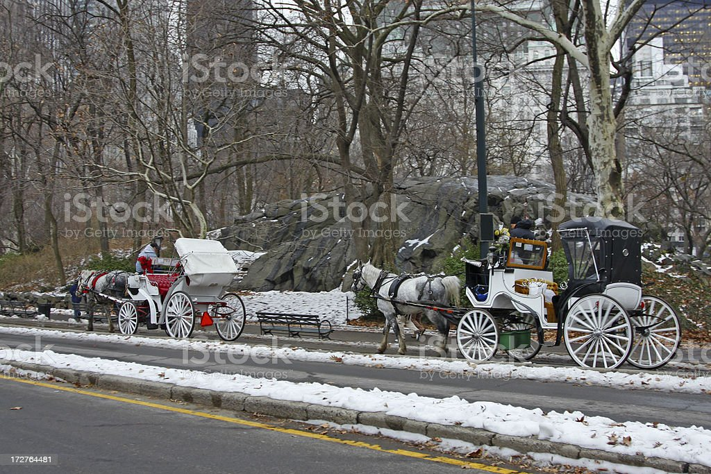 Riding in Central Park # 1 stock photo