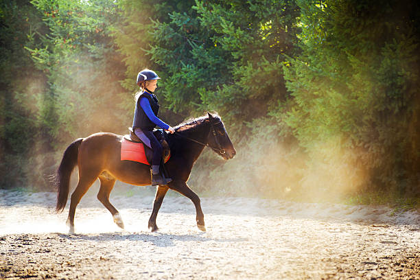Riding in dust A young girl riding her pony during riding lesson, outside. Natural sun rays shining in dust during sunset. pony stock pictures, royalty-free photos & images