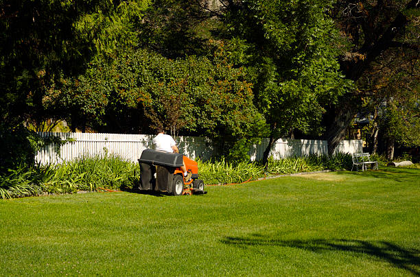 riding lawn mower - riding lawn mower stock photos and pictures