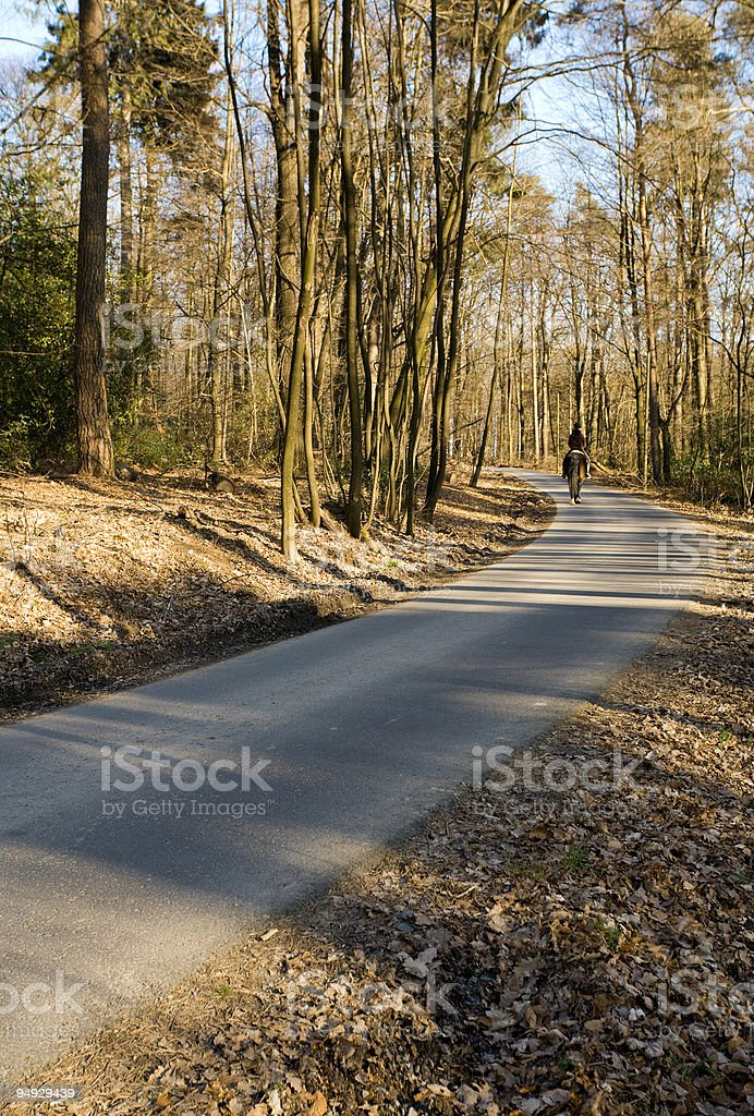 riding through the forest royalty-free stock photo