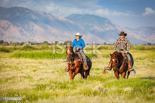 Cowgirl Mother and young cowboys riding their horses together on green farmland side by side. Rural Wild West Series. Real People, Utah, USA.