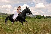 galloping beautiful wedding woman on her black stallion. photo with orange filter