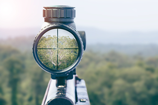 istock rifle target view on Natural Background. Image of a rifle scope sight used for aiming with a weapon 1068153320