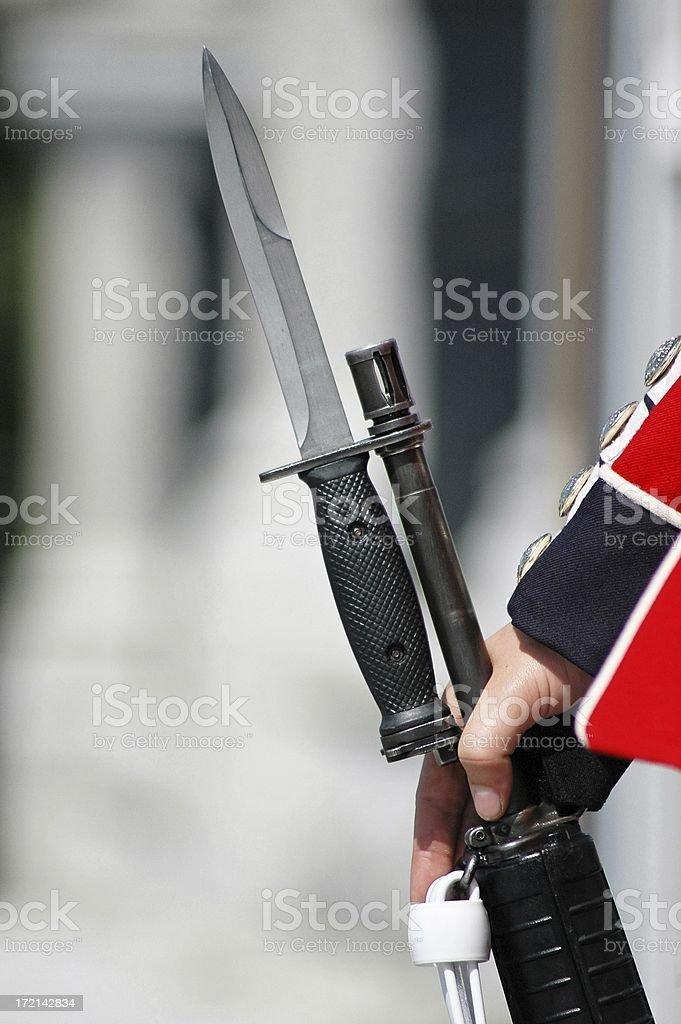 Rifle with bayonet royalty-free stock photo