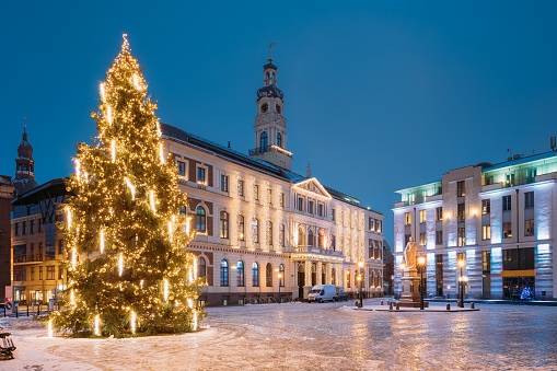 Riga, Latvia. Xmas Christmas Tree In Town Hall Square At Evening In Night Illuminations Lights. Famous Place At Winter New Year Holiday Evening