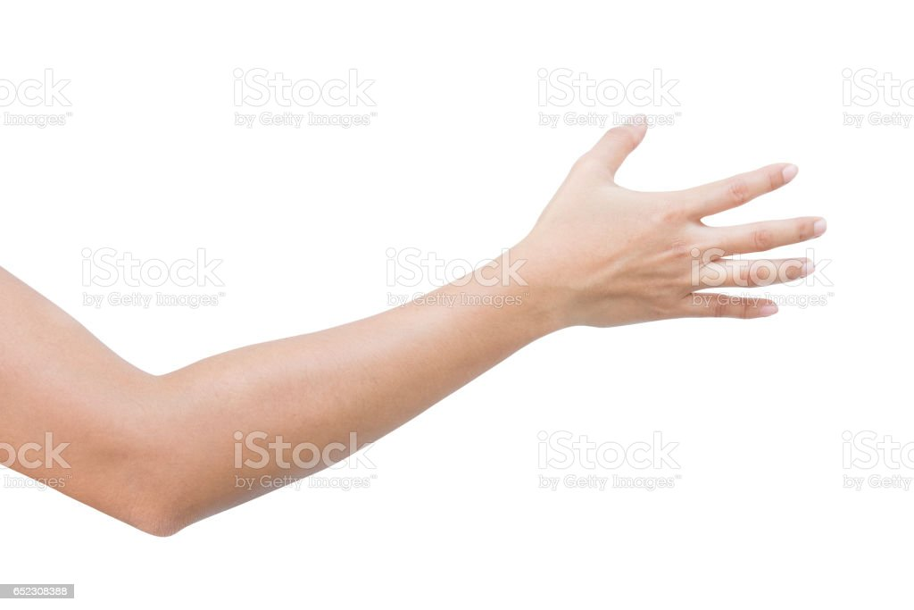 right back hand of a woman trying to reach or grab something. fling, touch sign. Reaching out to the left. isolated on white background stock photo