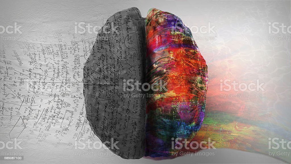 Right Side - Left Side Hemisphere of Brain stock photo
