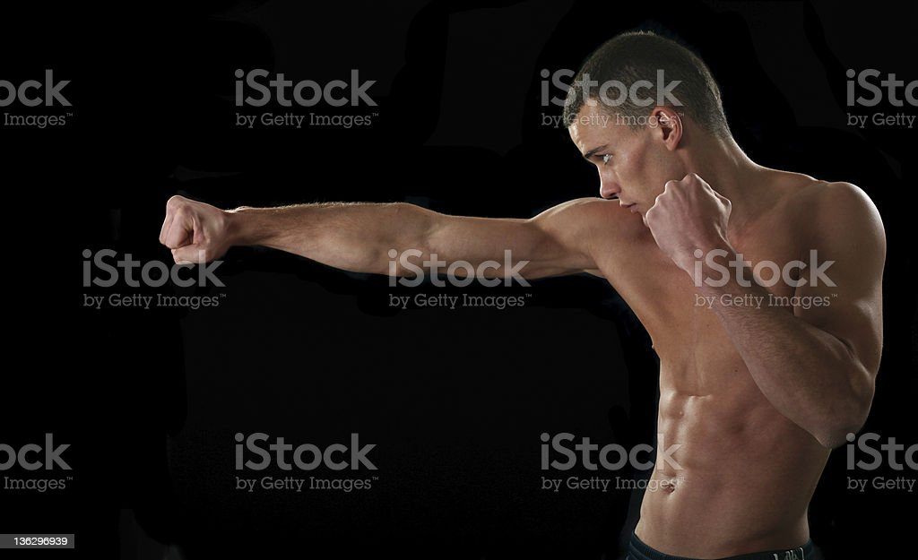 Right time to attack royalty-free stock photo