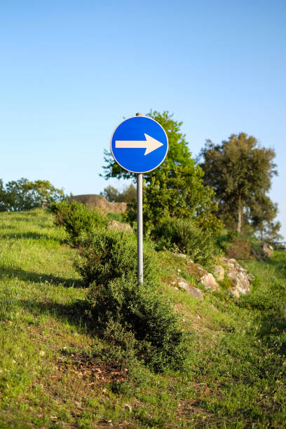 right way road sign in nature stock photo