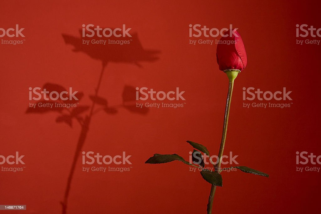 Rigth values, big results royalty-free stock photo