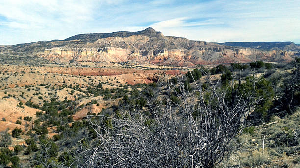 Rim Vista Canyon stock photo