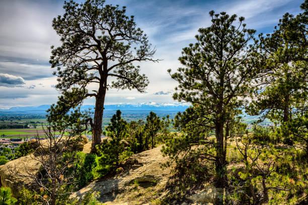 Rimrock Views stock photo