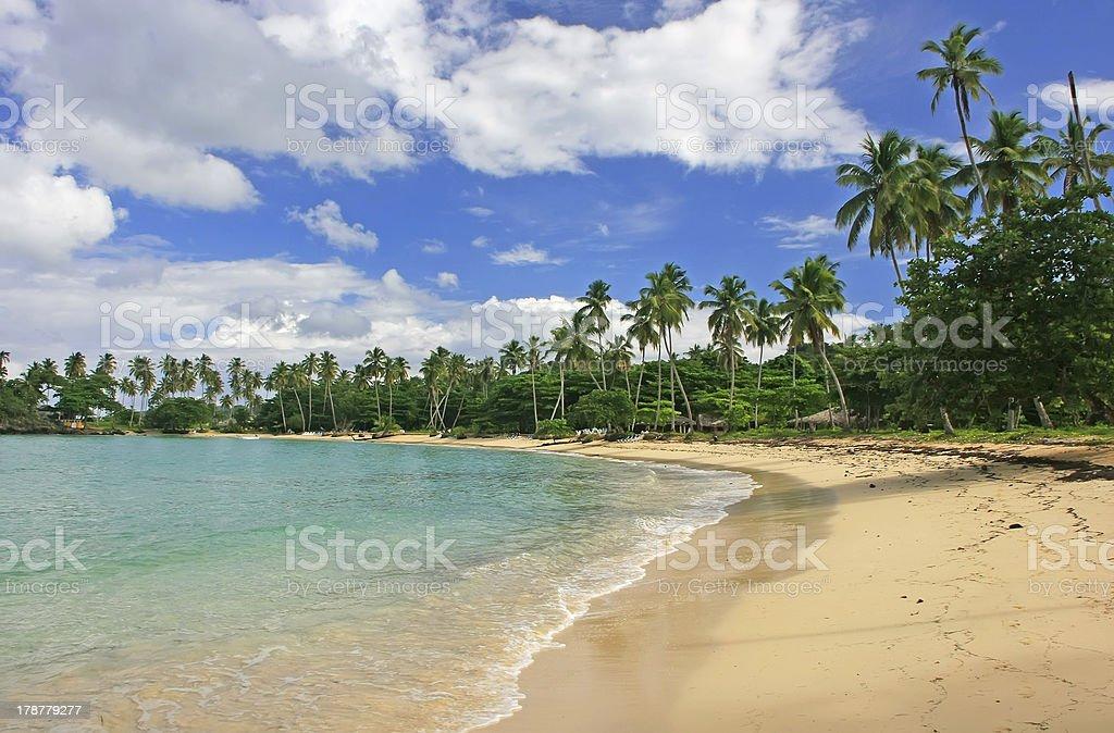 Rincon beach, Samana peninsula royalty-free stock photo