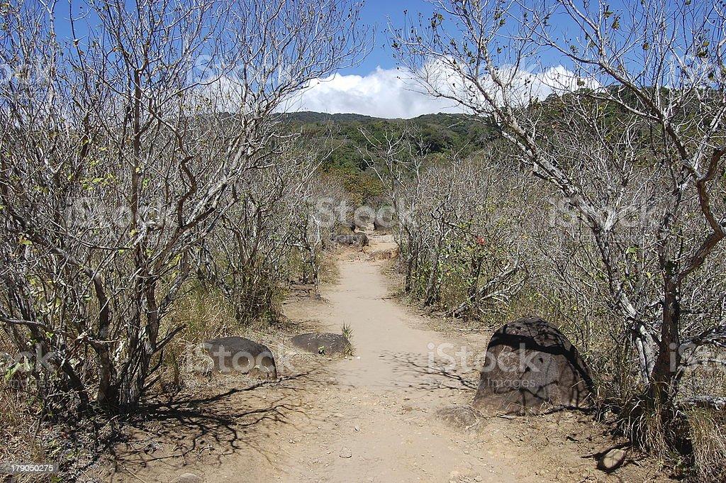 Rincon De La Vieja national park, Costa Rica stock photo