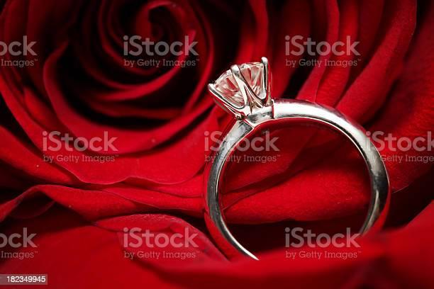 Ring and rose picture id182349945?b=1&k=6&m=182349945&s=612x612&h=lp5wtgwqgivnxfaitvfujvi6hbqqqrgr18mak9ndm0y=