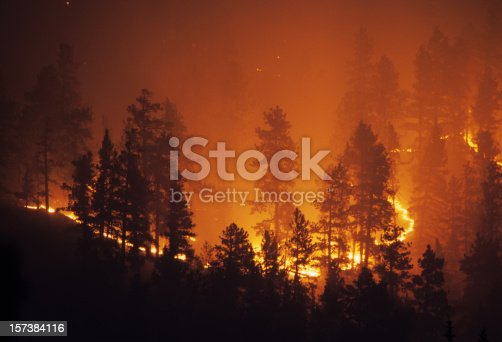 A forest glows as the fire burns out of control on a mountain hillside in the Pike National Forest behind the Platte Canyon High School as it works it way through the pine trees above highway 285 near the small town of Bailey, Colorado.