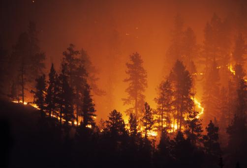 Ring Of Fire Bailey Colorado Rocky Mountain Forest Wildfire Stockfoto en meer beelden van Berg