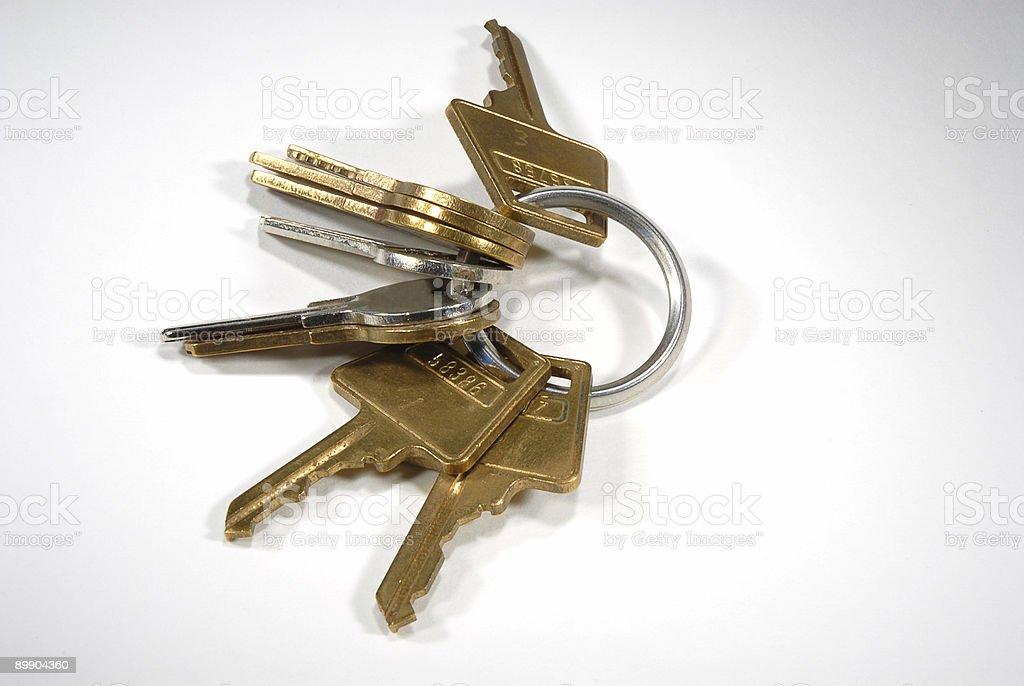 Ring of Keys royalty-free stock photo