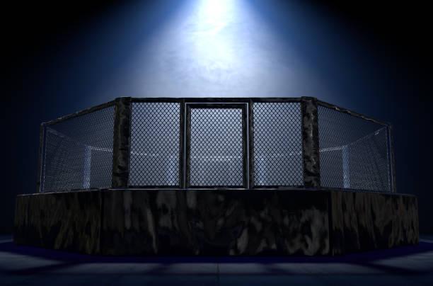 MMA Ring stock photo