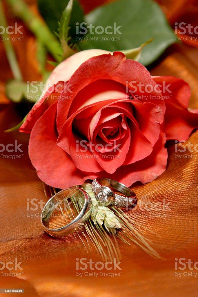 Ring Roses royalty-free stock photo