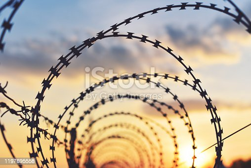 486568999istockphoto Ringed barbed wire 1197695558