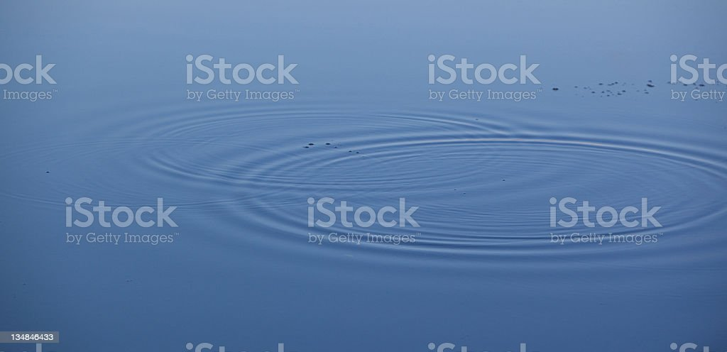 rings on the water surface royalty-free stock photo