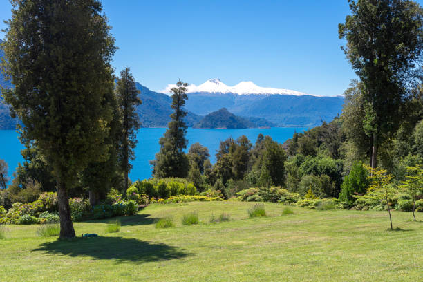 Rinihue lake and Mocho-Choshuenco national reserve as background, Chile stock photo