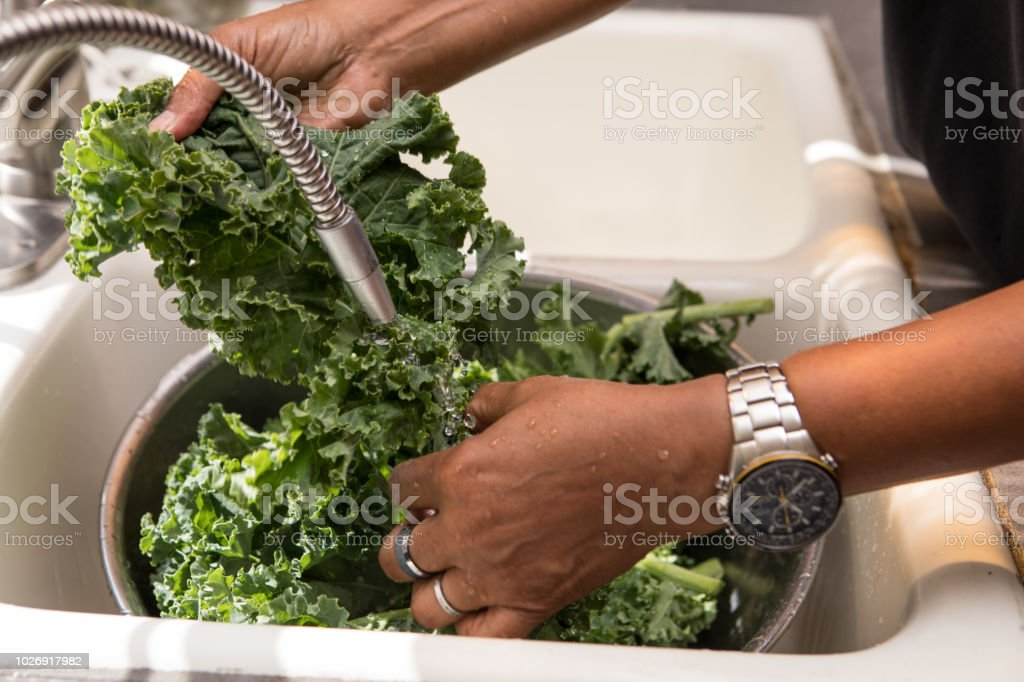 rinsing kale stock photo