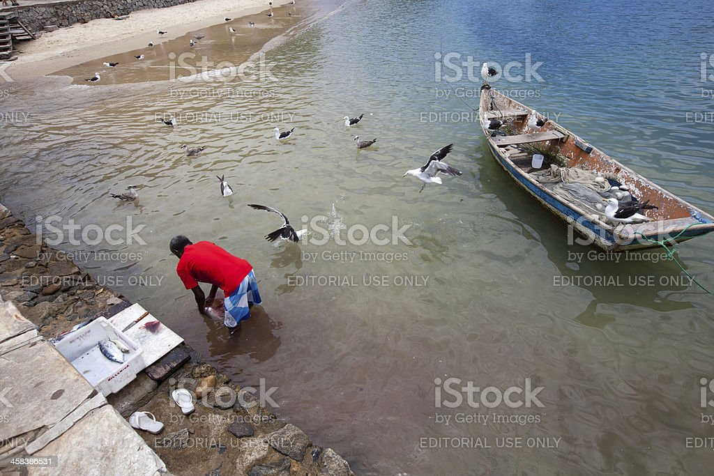 Rio de Janeiro. Fisherman Cleaning Fish in Buzios. royalty-free stock photo