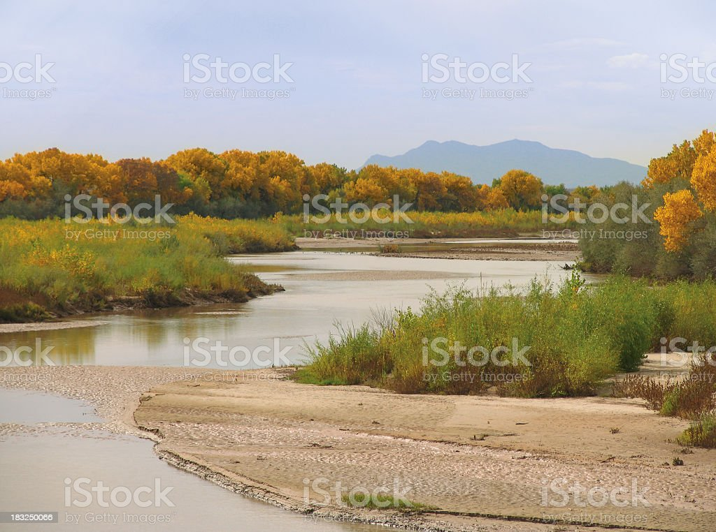 Rio Grande and Cottonwoods in Autumn royalty-free stock photo