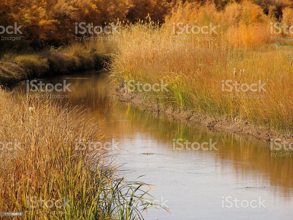 Rio Grande Irrigation Ditch royalty-free stock photo