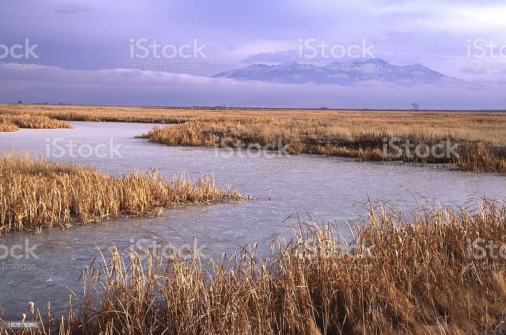 Rio Grande stock photo