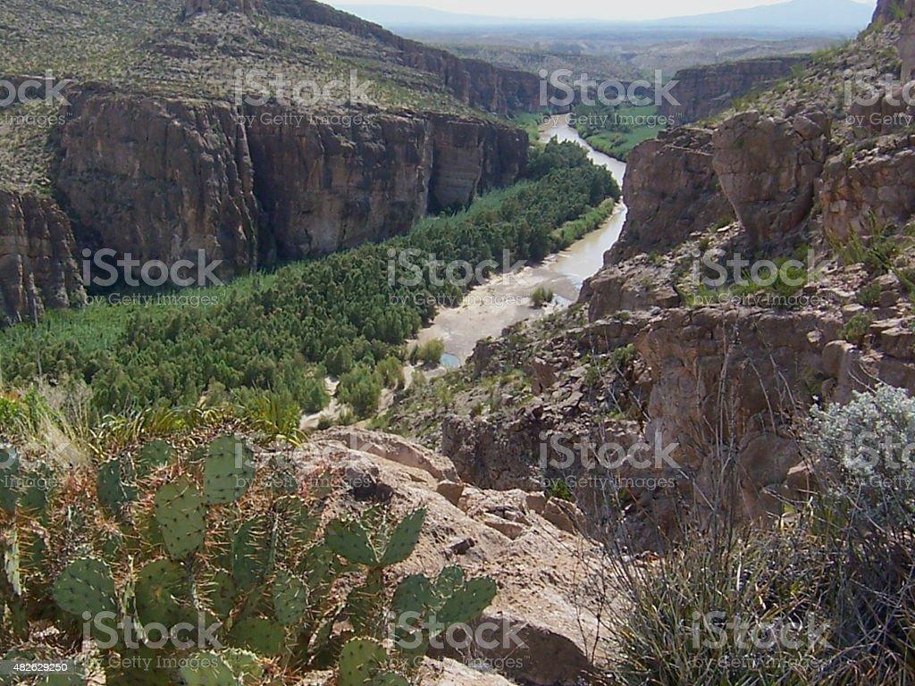 Rio Grande River with Cacti stock photo