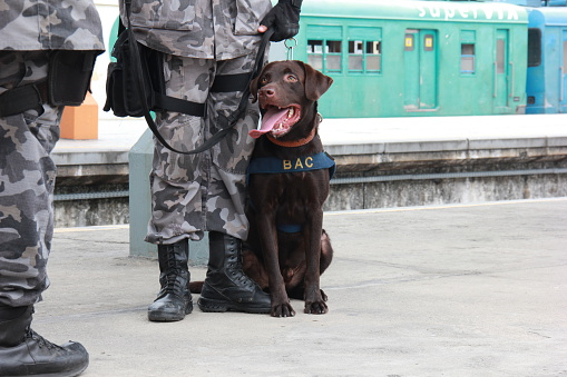Rio holds anti terrorism training for Rio 2016 Olympic Games