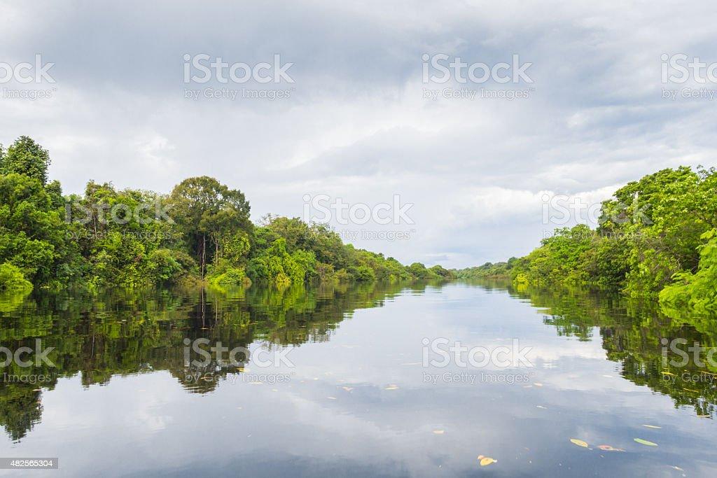Rio Negro, Anavilhanas, Amazônia. stock photo