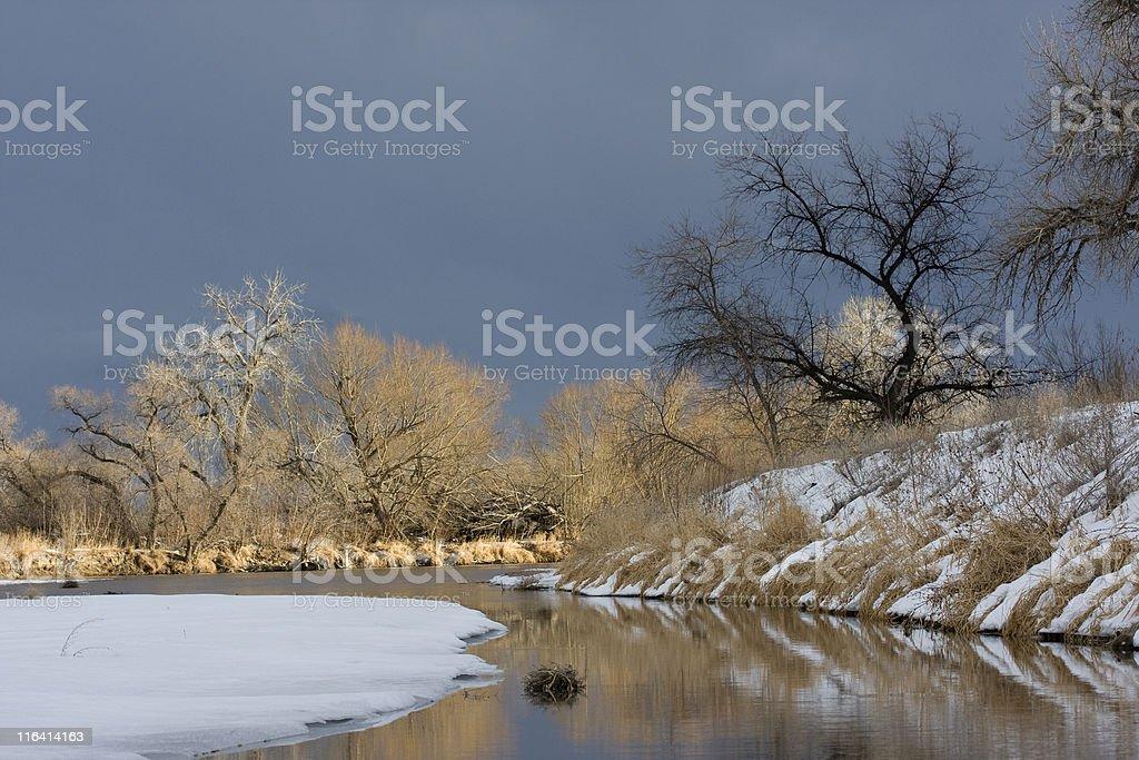Riparian forest along a river in Colorado prairies stock photo