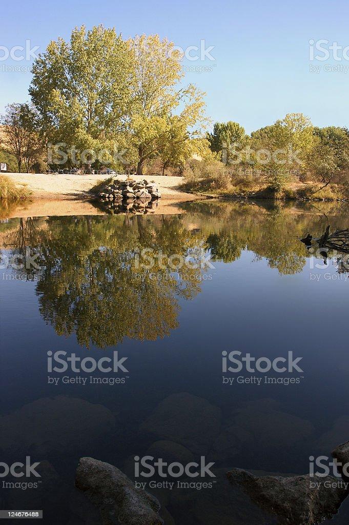 Riparian Reflection stock photo