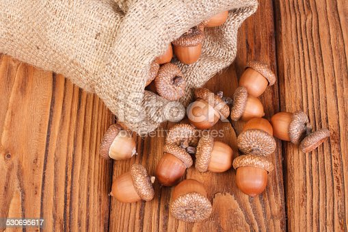 istock Ripe acorns spilled out of the bag on wooden table 530695617