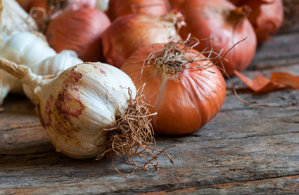ripe and raw onion and garlic on wooden background, alternative medicine, organic cleaner. onions and garlics background - zolfo foto e immagini stock