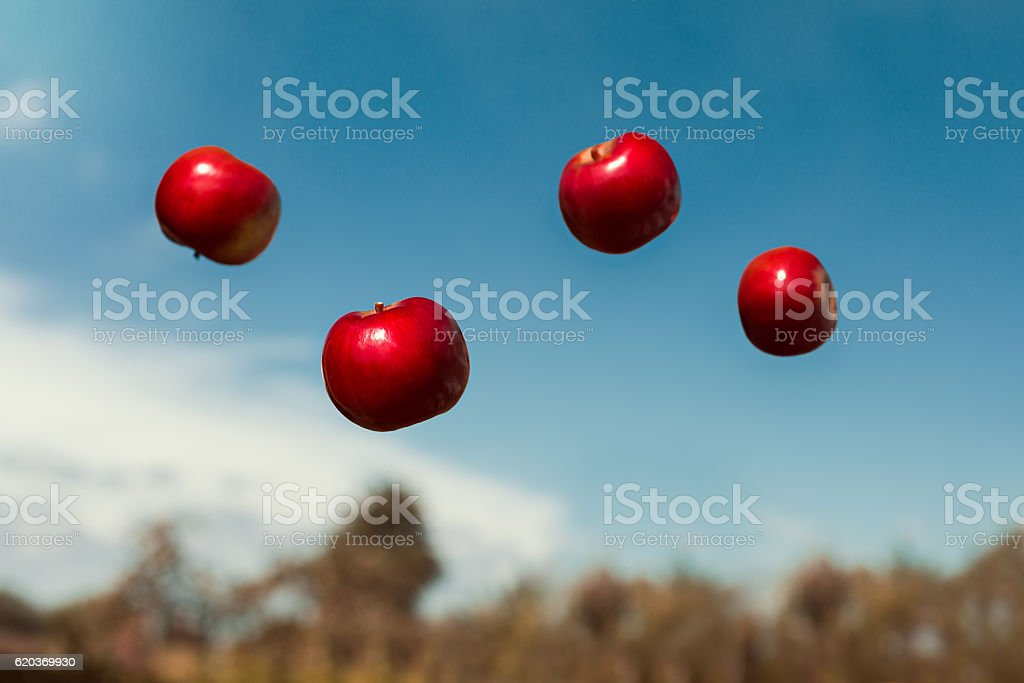 ripe apples in zero gravity thrown into the air stock photo