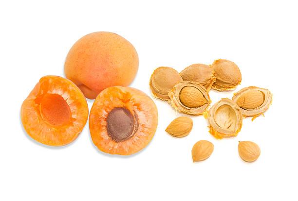 Ripe apricot and an apricot kernels closeup stock photo