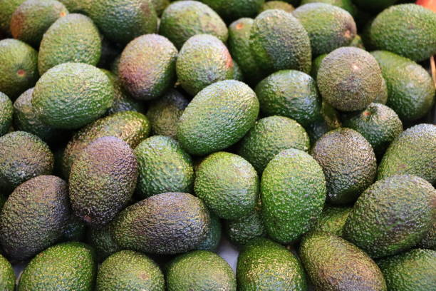 Ripe avocados on the market in Fremantle, Western Australia stock photo